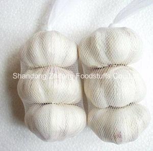 Zhifeng Food Wholesale Price 3p, 4p, 5p Fresh Garlic pictures & photos