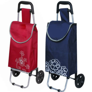 Factory Price Supermarket Hand Trolley Carts for Promotional (SP-516) pictures & photos