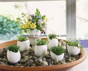 Black Beach Pebbles for Landscaping pictures & photos