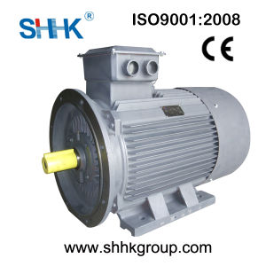Cheapest High Quality 3 Phase Electrical Motor of Log Splitter pictures & photos