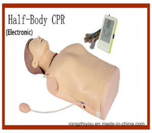 Medical Model Electronic Half Body CPR Training Manikin