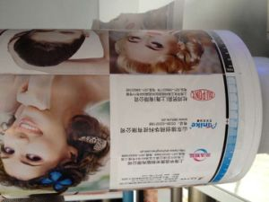 Self-Adhesive Label Paper Roll Die Cutting Slitting Flexographic Machine pictures & photos