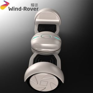 Wind Rover Smart Electric Skateboard Electric Chariot Hoverboard pictures & photos