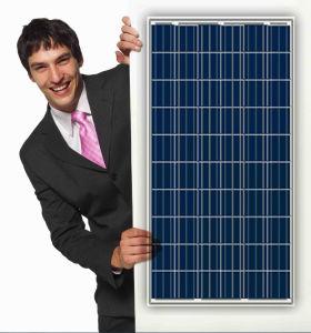 Best Poly Silicon Solar Panel (150W-325W)