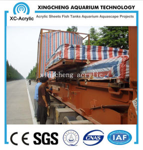 Customized Acrylic Material Curved Acrylic Sheet Aquarium Project Price pictures & photos