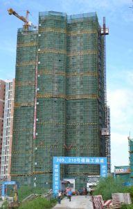 Construction Building Hoist Elevator Crane Lift pictures & photos