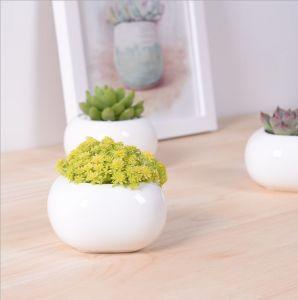 Mini Desktop Mini Ceramic Flowerpot pictures & photos