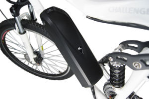 Full Suspension Electric Bike with Hub Motor pictures & photos