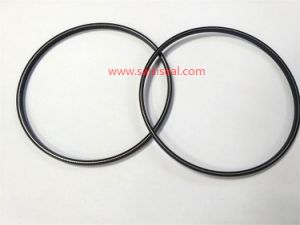 valve plug seal ring used for pump pictures & photos