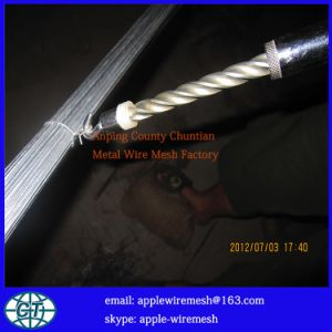 Rebar Tie Tool for Double Loop Tie Wire pictures & photos