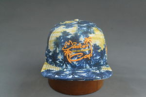 Colorfull Fabric Snapback Hat with Square Brim pictures & photos