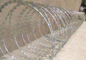Concertina Razor Wire/Cbt65 Single Coil Razor Barbed Wire pictures & photos