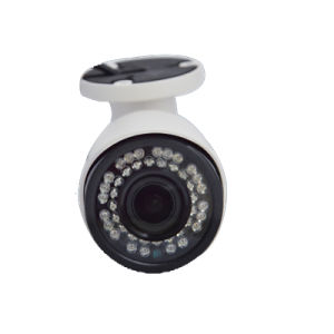 H. 265 1080P CCTV Security IP Video Camera pictures & photos