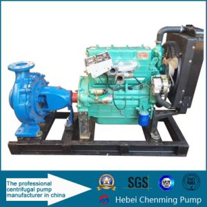 Horizontal Electric Farm and Industry Water Irrigation Pump pictures & photos