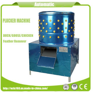 Full Automatic Stainless Steel Poultry Chicken Plucker Machine Bz-50 pictures & photos