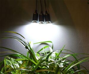 Solar Home Lighting System Kits with 3 LED Light Bulbs pictures & photos