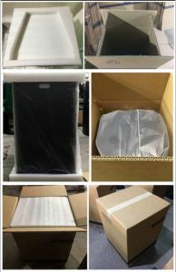 RF10 10 Inch Professional Speaker Audio (TACT) pictures & photos