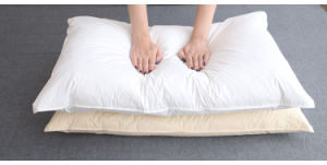 Luxury High Quality White Goose Down Pillow for Good Sleeping