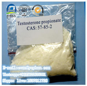 High Quality Injectable Testosterone Propionate CAS: 57-85-2 for Bodybuilding pictures & photos
