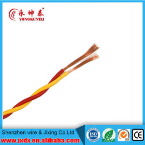 Rvs Twin Core Twisted Pair 2.5mm Electric Cable pictures & photos