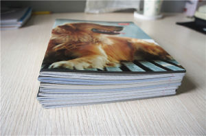 Cheap Bulk School Student Arabic Notebook Exercise Book pictures & photos