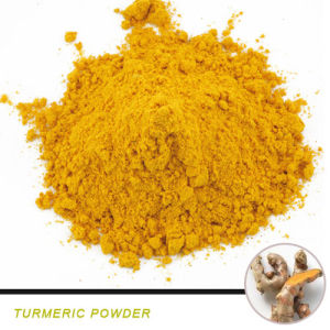 Natural Pigment Turmeric Oleoresin Turmeric Powder pictures & photos