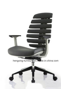 Modern Office Furniture Fabric Mesh Erogonomic Office Chair (HX-AC0991) pictures & photos