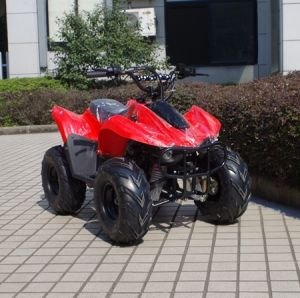 China Factory Cheaper 4 Wheeler Kids 50cc Quad ATV (A05) pictures & photos