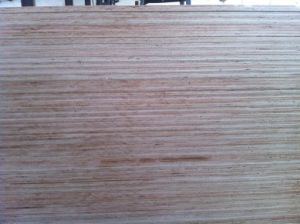 Marine Plywood (BS1088) pictures & photos
