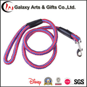 China Factory Wholesale Top Quality Dog Leash with Carabiner Hook pictures & photos