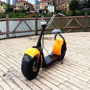 Citycoco Hot Sale Electric Scooter 26inch 60V 1000W pictures & photos