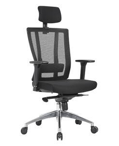 High Back Excecutive Office Mesh Chair (X-852A-G) pictures & photos