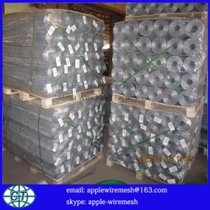 High Quality Gavlanized Chicken Wire Mesh pictures & photos