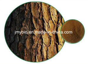 Natural High Quality Pine Bark Extract/ Food Grade Pine Bark Extract Powder pictures & photos