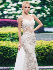 Spaghetti Straps Lace Open Back Mermaid Wedding Dress (Dream-100088) pictures & photos