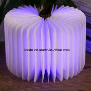 Portable LED Table Lamp for Decoration and Lighting pictures & photos