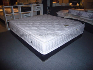 Australia Selling Cheap Price Pillow Top Hotel Mattres pictures & photos