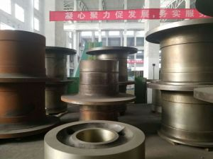 Sale Hollow Shaft for Cement Plant pictures & photos