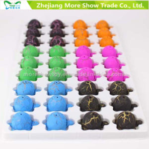New Magic Growing Pet Tortoise Eggs Hatching Egg Toys pictures & photos