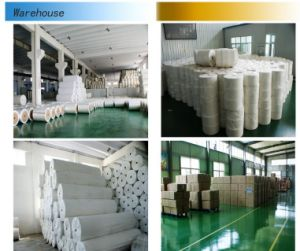 Polyester Spun Bonded Non Woven Fabric/Cloth for Printing and Packaging pictures & photos