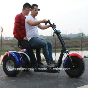 China Tricycle Supplier with Ce pictures & photos