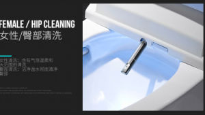 Foshan Floor Mounted Auto Opperation Ceramic Intelligent Wc pictures & photos
