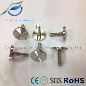 Stainless Steel Shelf Support Advertising Glass Standoff/Screw/Bolt