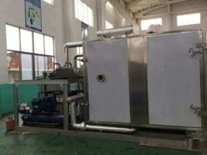 Vacuum Freeze Drying Machine for Fruit pictures & photos