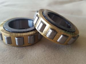 Good Quality Cylindrical Roller Bearing Nu20/560, Nu12/560, Nu10/600 pictures & photos