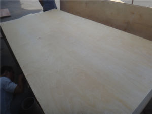 C2 Grade 9mm High Quality Laminated Veneer Lumber Birch Plywood for USA Market pictures & photos