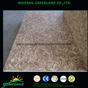 Pine Wood Environmental Grade OSB for Furniture pictures & photos