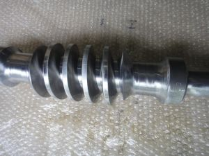 Auto Parts Machining Worm Shaft pictures & photos