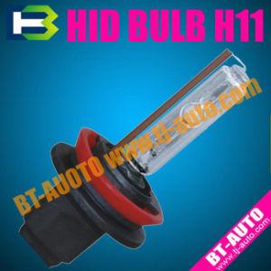 Xenon Lamp/Auto Xenon Bulb (H11)