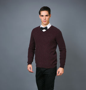 Men′ S Fashion Cashmere Sweater 17brpv130 pictures & photos